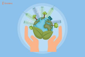 How can growth and sustainability go hand in hand with your business
