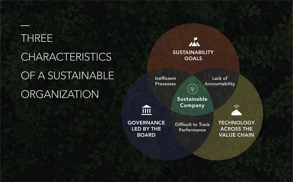 Three Characteristics of a Sustainable Organization