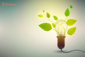 7 Responsible Business Practices That Your Organization Can Adopt Towards Sustainability